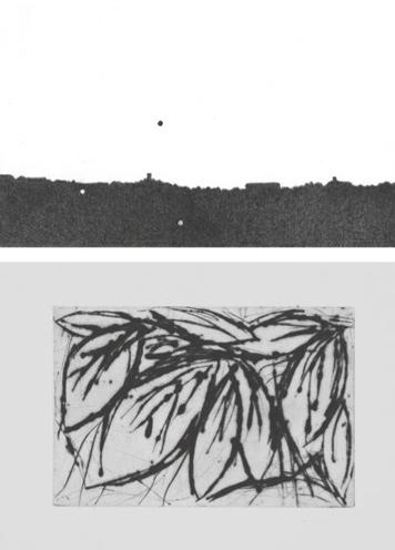 Galerie Quadri Edition - Trhierry Aughuet - Frédéric Dambreveville