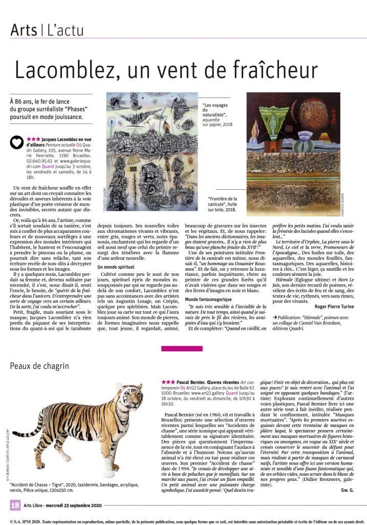 Galerie Quadri - Jacques Lacomblez - La Libre Belgique